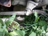 Рено Сценик 2 Renault Scenic рейка рулевая